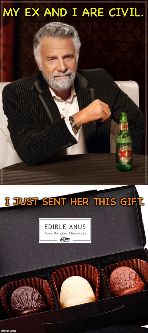 It's the thought that counts. | MY EX AND I ARE CIVIL. I JUST SENT HER THIS GIFT. | image tagged in memes,funny,the most interesting man in the world,chocolate | made w/ Imgflip meme maker