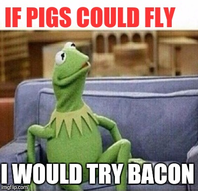 IF PIGS COULD FLY I WOULD TRY BACON | made w/ Imgflip meme maker