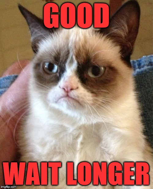 Grumpy Cat Meme | GOOD WAIT LONGER | image tagged in memes,grumpy cat | made w/ Imgflip meme maker
