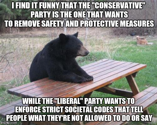 "Literally My Stance On Politics | I FIND IT FUNNY THAT THE ""CONSERVATIVE"" PARTY IS THE ONE THAT WANTS TO REMOVE SAFETY AND PROTECTIVE MEASURES WHILE THE ""LIBERAL"" PARTY WANTS 