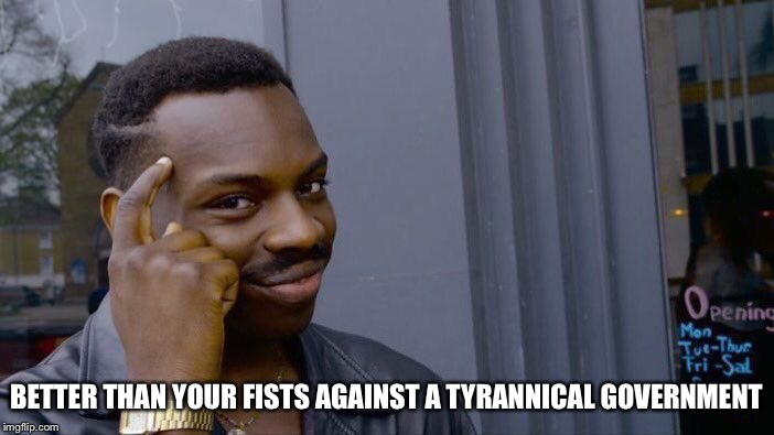 Roll Safe Think About It Meme | BETTER THAN YOUR FISTS AGAINST A TYRANNICAL GOVERNMENT | image tagged in memes,roll safe think about it | made w/ Imgflip meme maker