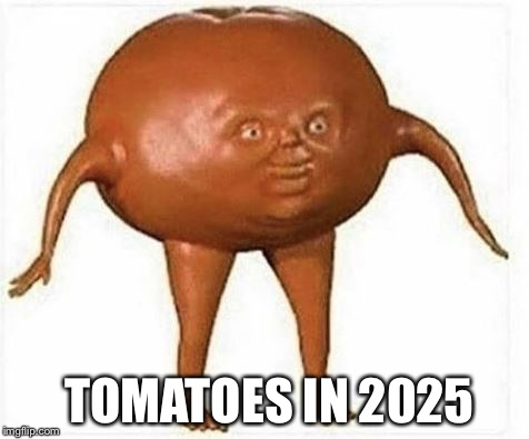tomato | TOMATOES IN 2025 | image tagged in tomato | made w/ Imgflip meme maker