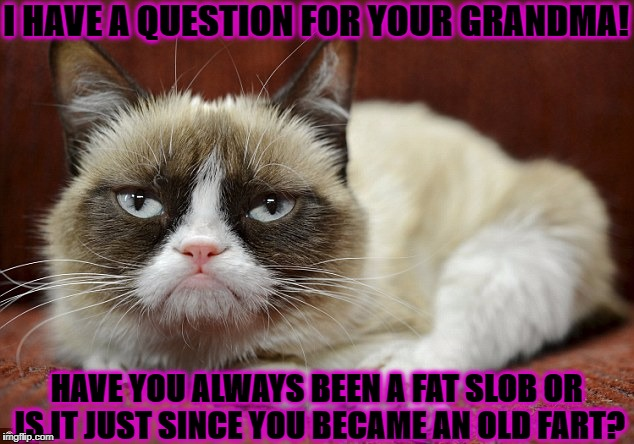 I HAVE A QUESTION FOR YOUR GRANDMA! HAVE YOU ALWAYS BEEN A FAT SLOB OR IS IT JUST SINCE YOU BECAME AN OLD FART? | image tagged in grumpy cat | made w/ Imgflip meme maker