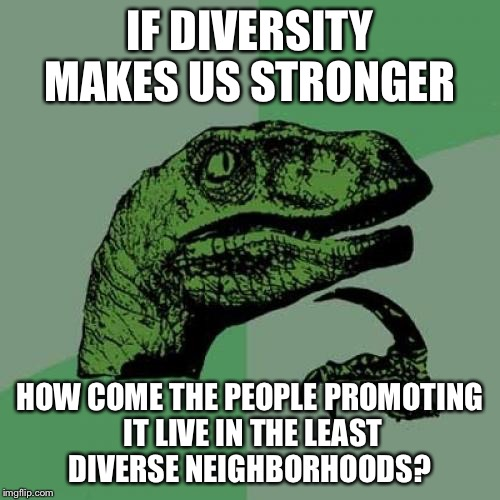 Philosoraptor Meme | IF DIVERSITY MAKES US STRONGER HOW COME THE PEOPLE PROMOTING IT LIVE IN THE LEAST DIVERSE NEIGHBORHOODS? | image tagged in memes,philosoraptor | made w/ Imgflip meme maker