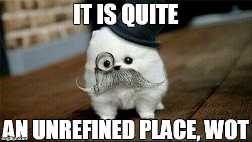 Sophisticated Dog | IT IS QUITE AN UNREFINED PLACE, WOT | image tagged in sophisticated dog | made w/ Imgflip meme maker