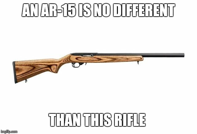 AN AR-15 IS NO DIFFERENT; THAN THIS RIFLE | image tagged in ruger 10-22 | made w/ Imgflip meme maker