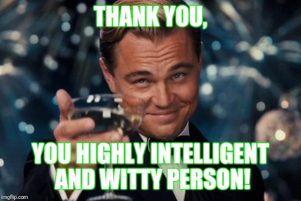 Leonardo Dicaprio Cheers Meme | THANK YOU, YOU HIGHLY INTELLIGENT AND WITTY PERSON! | image tagged in memes,leonardo dicaprio cheers | made w/ Imgflip meme maker