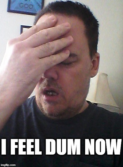 face palm | I FEEL DUM NOW | image tagged in face palm | made w/ Imgflip meme maker