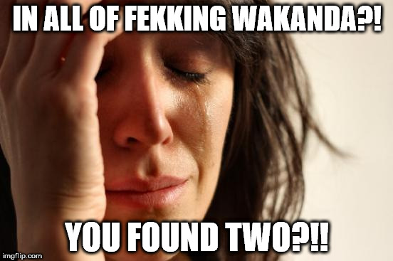 First World Problems | IN ALL OF FEKKING WAKANDA?! YOU FOUND TWO?!! | image tagged in memes,first world problems | made w/ Imgflip meme maker