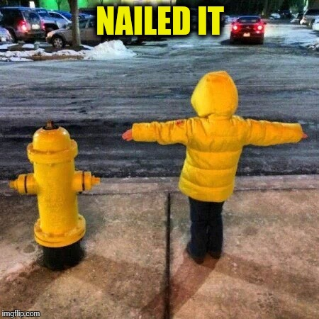 Nailed it | NAILED IT | image tagged in nailed it,pipe_picasso | made w/ Imgflip meme maker