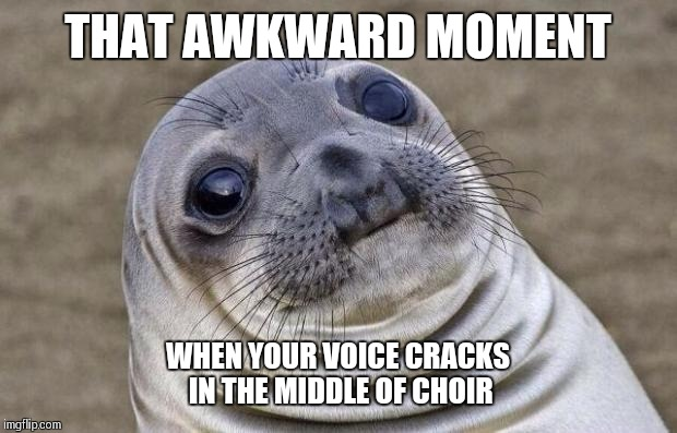 Guys relatable awkward moments | THAT AWKWARD MOMENT WHEN YOUR VOICE CRACKS IN THE MIDDLE OF CHOIR | image tagged in memes,awkward moment sealion | made w/ Imgflip meme maker