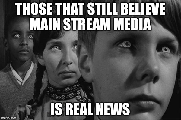 THOSE THAT STILL BELIEVE MAIN STREAM MEDIA IS REAL NEWS | image tagged in brainwashed | made w/ Imgflip meme maker