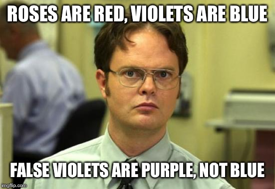 Dwight's Poem Making | ROSES ARE RED, VIOLETS ARE BLUE FALSE VIOLETS ARE PURPLE, NOT BLUE | image tagged in memes,dwight schrute,roses are red,roses are red violets are are blue,poem,smartass | made w/ Imgflip meme maker