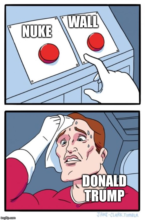 Two Buttons Meme | NUKE WALL DONALD TRUMP | image tagged in memes,two buttons | made w/ Imgflip meme maker