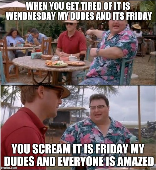 See Nobody Cares Meme | WHEN YOU GET TIRED OF IT IS WENDNESDAY MY DUDES AND ITS FRIDAY YOU SCREAM IT IS FRIDAY MY DUDES AND EVERYONE IS AMAZED | image tagged in memes,see nobody cares | made w/ Imgflip meme maker