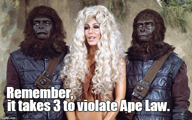 It takes 3 | Remember, it takes 3 to violate Ape Law. | image tagged in planet of the apes,funny | made w/ Imgflip meme maker