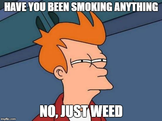 Futurama Fry Meme | HAVE YOU BEEN SMOKING ANYTHING NO, JUST WEED | image tagged in memes,futurama fry | made w/ Imgflip meme maker