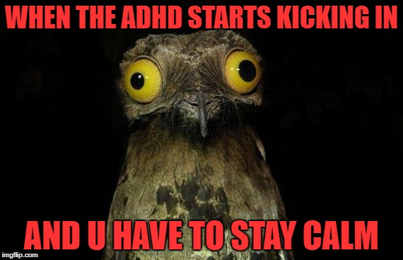 Weird Stuff I Do Potoo | WHEN THE ADHD STARTS KICKING IN AND U HAVE TO STAY CALM | image tagged in memes,weird stuff i do potoo | made w/ Imgflip meme maker