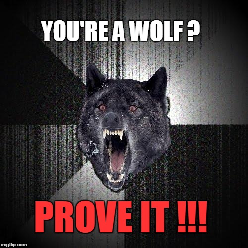 You're a Wolf? | YOU'RE A WOLF ? PROVE IT !!! | image tagged in memes,insanity wolf | made w/ Imgflip meme maker