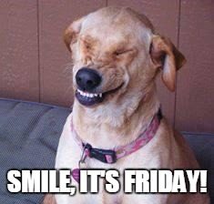 funny dog | SMILE, IT'S FRIDAY! | image tagged in funny dog | made w/ Imgflip meme maker