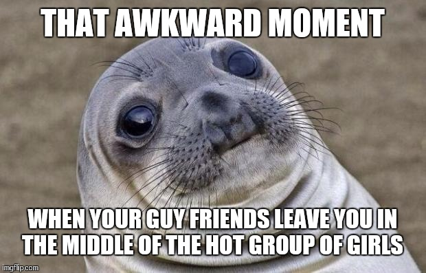 Guys relatable awkward moments  | THAT AWKWARD MOMENT WHEN YOUR GUY FRIENDS LEAVE YOU IN THE MIDDLE OF THE HOT GROUP OF GIRLS | image tagged in memes,awkward moment sealion | made w/ Imgflip meme maker