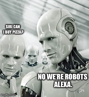 Robots | SIRI CAN I BUY PIZZA? NO WE'RE ROBOTS ALEXA. | image tagged in memes,robots | made w/ Imgflip meme maker