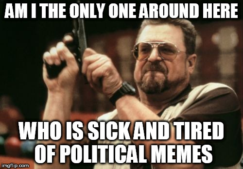 Am I The Only One Around Here Meme | AM I THE ONLY ONE AROUND HERE WHO IS SICK AND TIRED OF POLITICAL MEMES | image tagged in memes,am i the only one around here | made w/ Imgflip meme maker