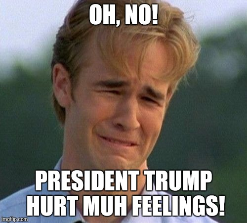 1990s First World Problems Meme | OH, NO! PRESIDENT TRUMP HURT MUH FEELINGS! | image tagged in memes,1990s first world problems | made w/ Imgflip meme maker