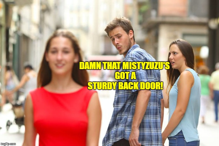 Distracted Boyfriend Meme | DAMN THAT MISTYZUZU'S GOT A STURDY BACK DOOR! | image tagged in memes,distracted boyfriend | made w/ Imgflip meme maker