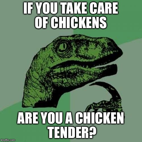 Philosoraptor Meme | IF YOU TAKE CARE OF CHICKENS ARE YOU A CHICKEN TENDER? | image tagged in memes,philosoraptor | made w/ Imgflip meme maker