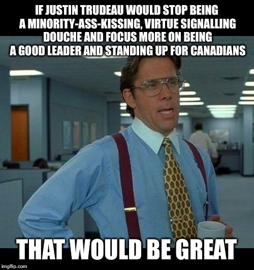 That would be great  | IF JUSTIN TRUDEAU WOULD STOP BEING A MINORITY-ASS-KISSING, VIRTUE SIGNALLING DOUCHE AND FOCUS MORE ON BEING A GOOD LEADER AND STANDING UP FO | image tagged in that would be great | made w/ Imgflip meme maker