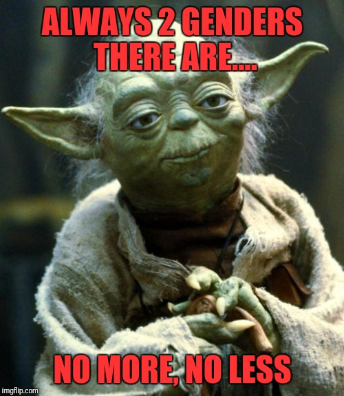 Star Wars Yoda Meme | ALWAYS 2 GENDERS THERE ARE.... NO MORE, NO LESS | image tagged in memes,star wars yoda | made w/ Imgflip meme maker