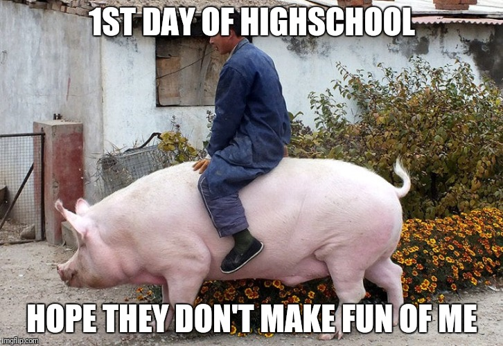 High school |  1ST DAY OF HIGHSCHOOL; HOPE THEY DON'T MAKE FUN OF ME | image tagged in highschool,pig,pigs,ride,public transport,transport | made w/ Imgflip meme maker