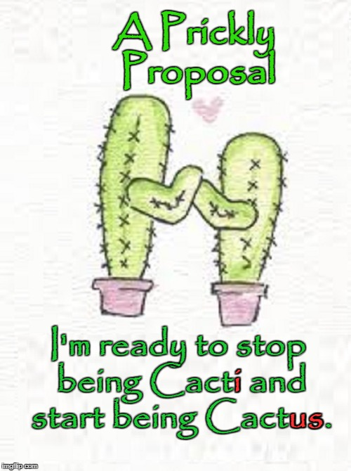 Succulent Love  | A Prickly Proposal I'm ready to stop being Cacti and start being Cactus. i us | image tagged in cactus love,vince vance,saguaro,carnegiea gigantea,cactus,cacti | made w/ Imgflip meme maker