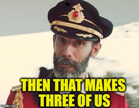 Captain Obvious | THEN THAT MAKES THREE OF US | image tagged in captain obvious | made w/ Imgflip meme maker