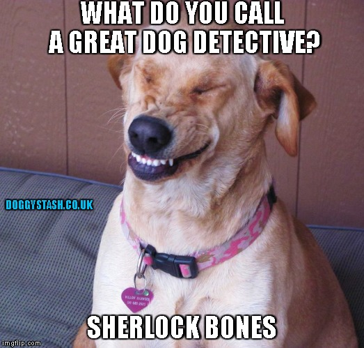 WHAT DO YOU CALL A GREAT DOG DETECTIVE? SHERLOCK BONES | image tagged in laughing dog | made w/ Imgflip meme maker