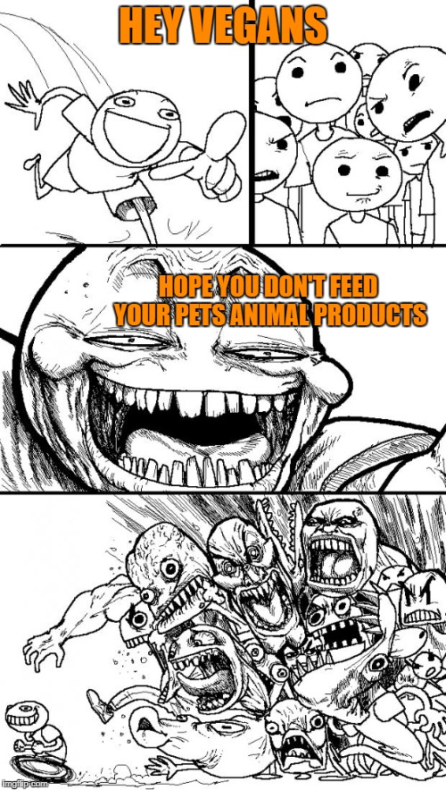 Just saying... | HEY VEGANS HOPE YOU DON'T FEED YOUR PETS ANIMAL PRODUCTS | image tagged in memes,hey internet,vegan,pets | made w/ Imgflip meme maker