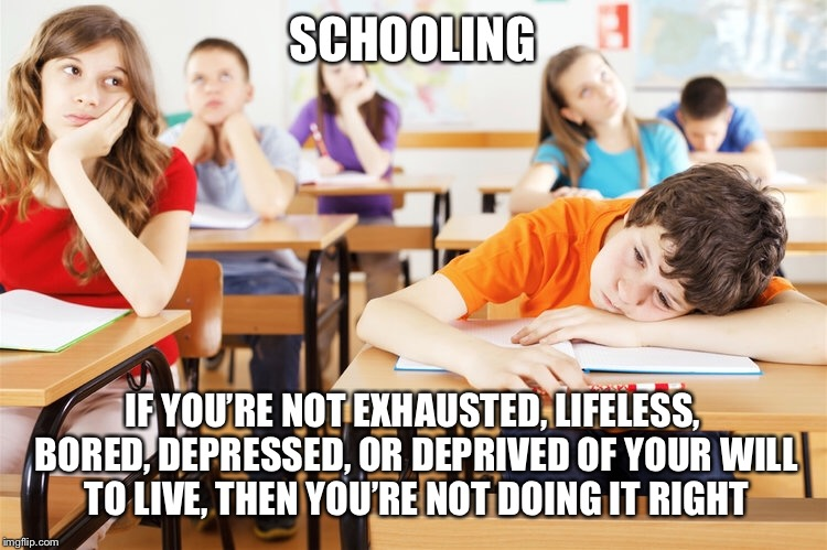 SCHOOLING IF YOU'RE NOT EXHAUSTED, LIFELESS, BORED, DEPRESSED, OR DEPRIVED OF YOUR WILL TO LIVE, THEN YOU'RE NOT DOING IT RIGHT | image tagged in school,misery,sarcasm | made w/ Imgflip meme maker