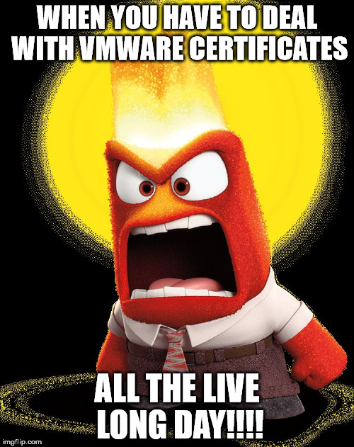 WHEN YOU HAVE TO DEAL WITH VMWARE CERTIFICATES ALL THE LIVE LONG DAY!!!! | image tagged in anger inside out | made w/ Imgflip meme maker