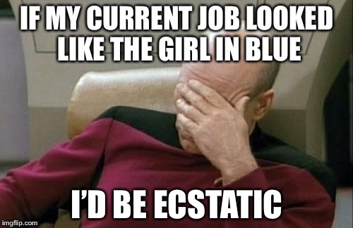Captain Picard Facepalm Meme | IF MY CURRENT JOB LOOKED LIKE THE GIRL IN BLUE I'D BE ECSTATIC | image tagged in memes,captain picard facepalm | made w/ Imgflip meme maker