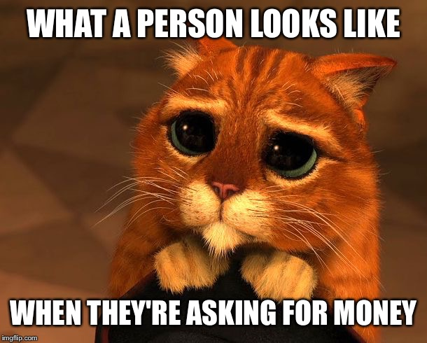 Puss wants some money! | WHAT A PERSON LOOKS LIKE WHEN THEY'RE ASKING FOR MONEY | image tagged in shrek,puss in boots,money,begging,begging cat,cute cat | made w/ Imgflip meme maker