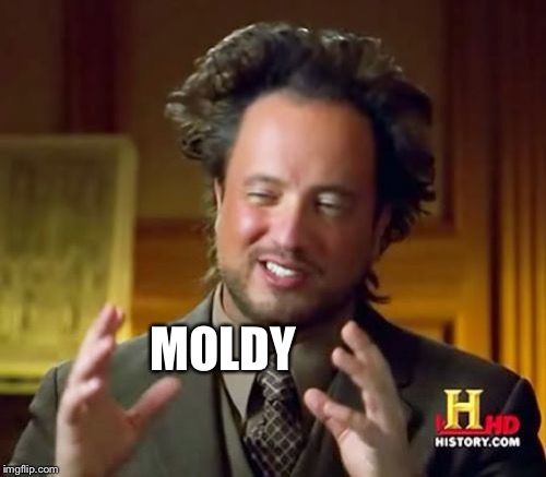 Ancient Aliens Meme | MOLDY | image tagged in memes,ancient aliens | made w/ Imgflip meme maker
