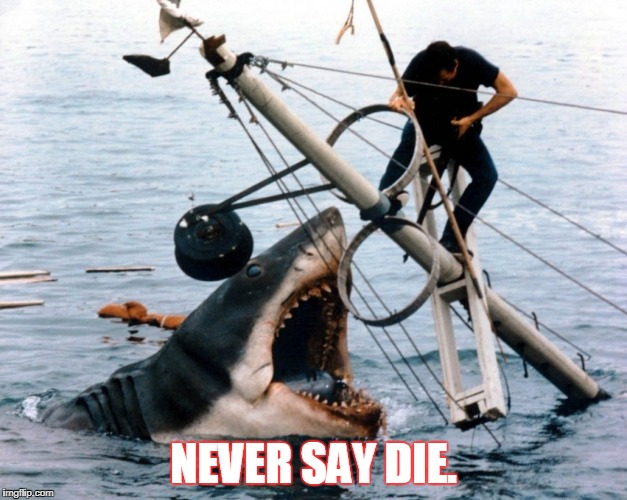 Jaws | NEVER SAY DIE. | image tagged in jaws | made w/ Imgflip meme maker