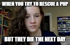 Depressed Chappy | WHEN YOU TRY TO RESCUE A PUP BUT THEY DIE THE NEXT DAY | image tagged in depressed chappy,animal rescue,puppy,death | made w/ Imgflip meme maker