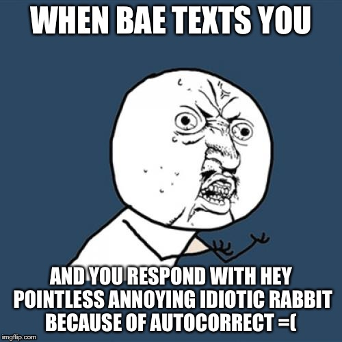 Y U No Meme | WHEN BAE TEXTS YOU AND YOU RESPOND WITH HEY POINTLESS ANNOYING IDIOTIC RABBIT BECAUSE OF AUTOCORRECT =( | image tagged in memes,y u no | made w/ Imgflip meme maker