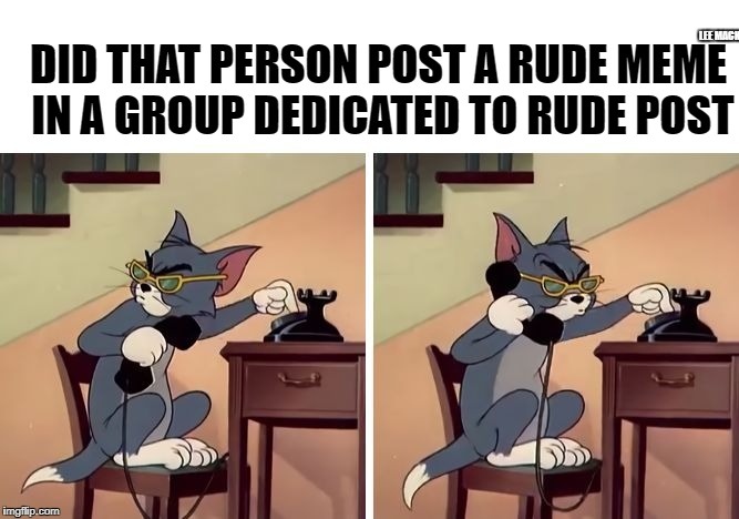 don't join a group that is offencive to you  | DID THAT PERSON POST A RUDE MEME IN A GROUP DEDICATED TO RUDE POST LEE MACK | image tagged in snowflake,feelings,rat,troll | made w/ Imgflip meme maker