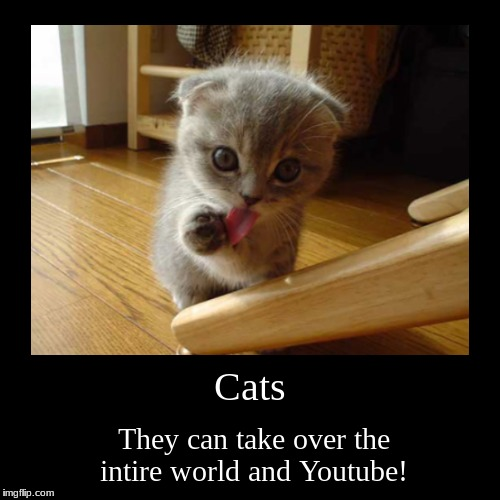 Cats | They can take over the intire world and Youtube! | image tagged in funny,demotivationals | made w/ Imgflip demotivational maker