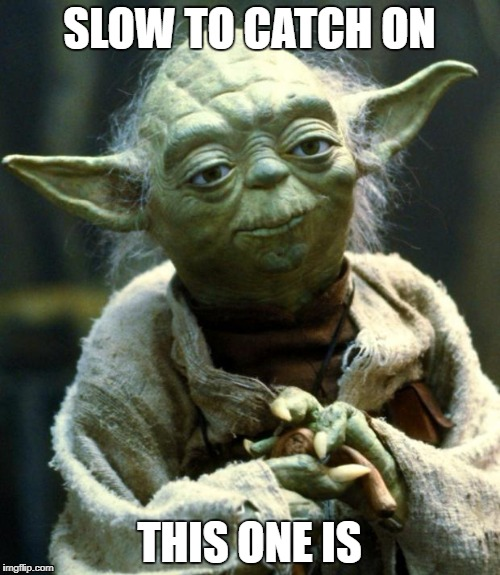 Star Wars Yoda Meme | SLOW TO CATCH ON THIS ONE IS | image tagged in memes,star wars yoda | made w/ Imgflip meme maker
