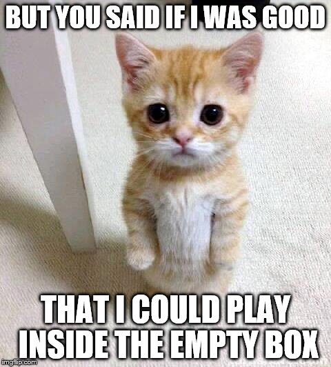 Cute Cat Meme | BUT YOU SAID IF I WAS GOOD THAT I COULD PLAY INSIDE THE EMPTY BOX | image tagged in memes,cute cat,good,empty box | made w/ Imgflip meme maker
