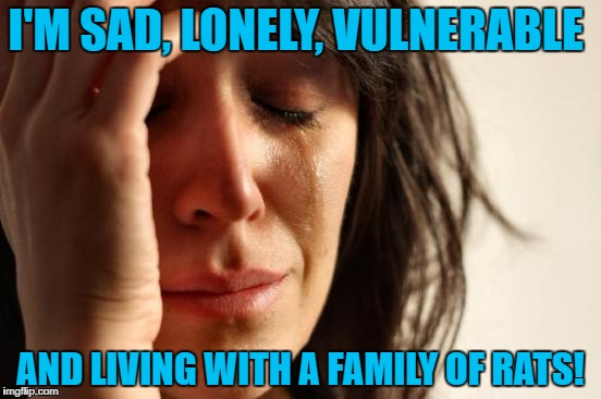 First World Problems Meme | I'M SAD, LONELY, VULNERABLE AND LIVING WITH A FAMILY OF RATS! | image tagged in memes,first world problems | made w/ Imgflip meme maker
